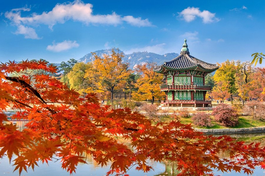Gyeongbokgung Palace And Soft Focus Of Maple Tree In Autumn, Seoul, South Korea