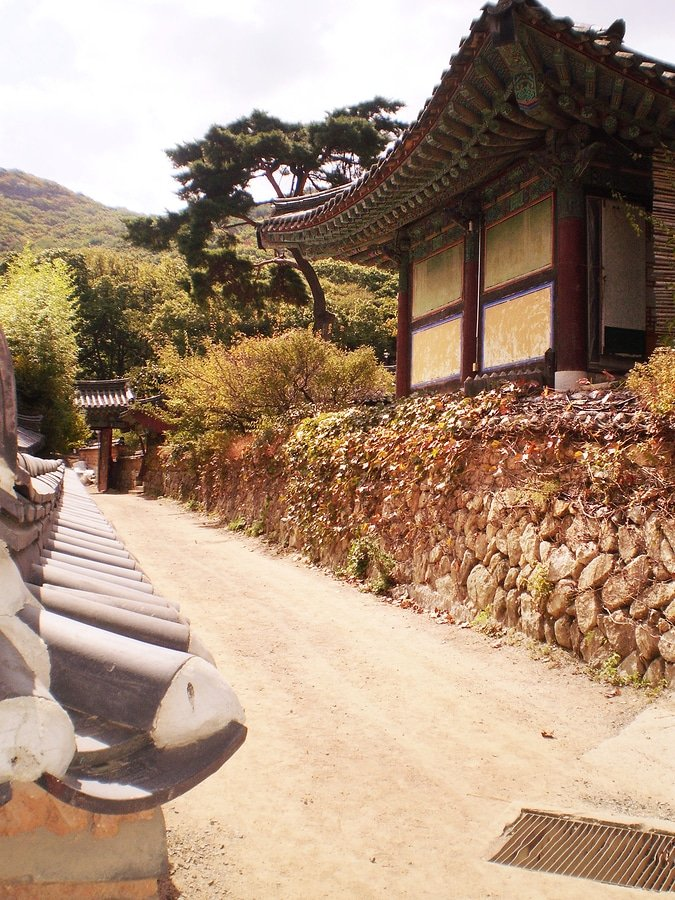It just looks unreal... in a good way, Beomeosa Temple, Busan