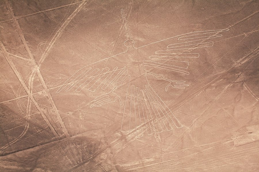 Condor, the lines and geoglyphs of Nazca Desert, Peru