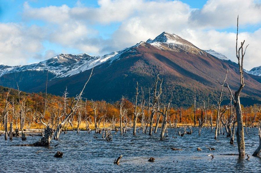 Lake Escondido, Isla Grande De Tierra Del Fuego, Argentina