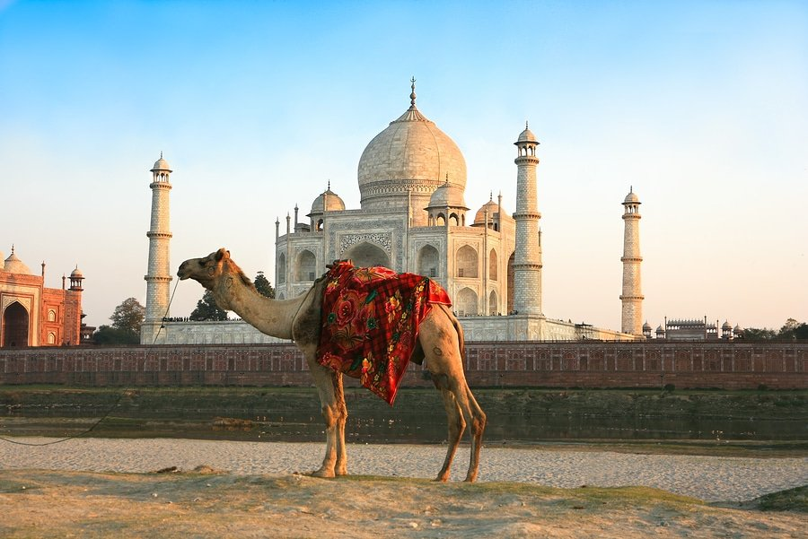 India's Golden Triangle in six day