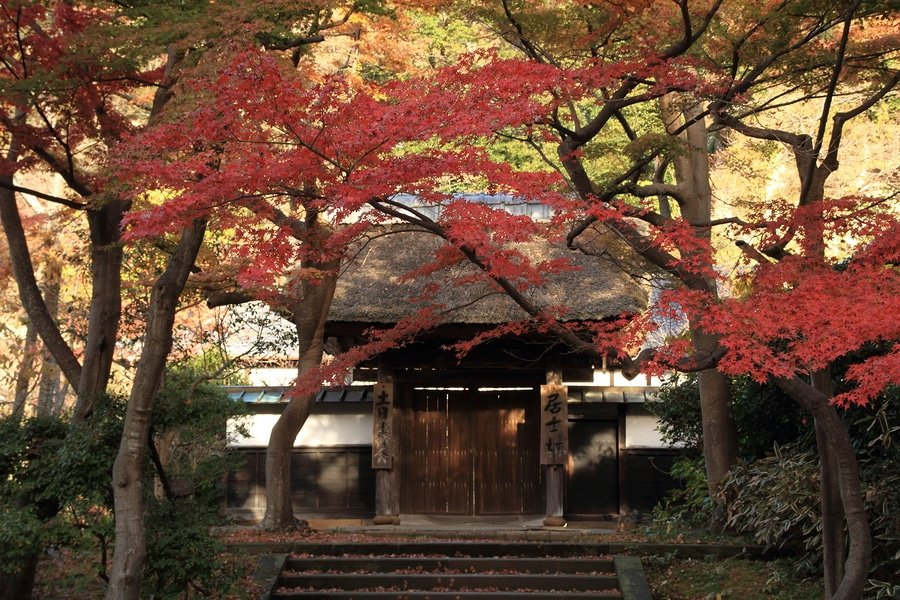 Zuirokuzan Engaku Kōshō Zenji, or Engaku-ji, is one of the most important Zen Buddhist temple complexes in Japan and is ranked second among Kamakura's Five Mountains