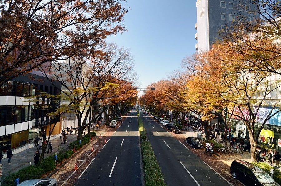 Omotesandō , Tokyo, Japan