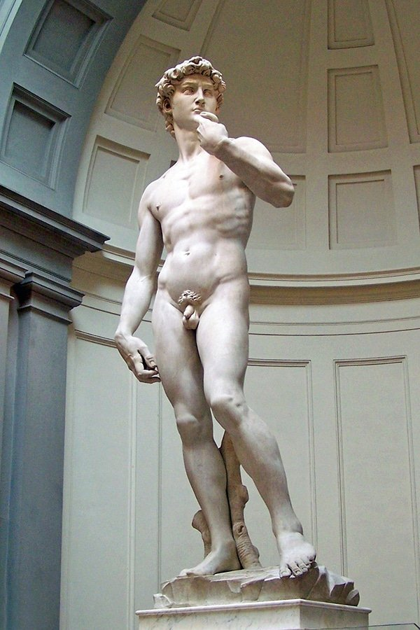 "The Galleria dell'Accademia di Firenze, or ""Gallery of the Academy of Florence"", is an art museum in Florence, Italy. It is the home of Michelangelo's sculpture David"