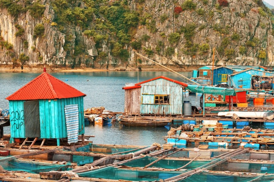 Traditional Asian floating village in the waters of Halong Bay, Vietnam