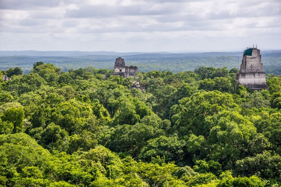 Panorama of Tikal National Park