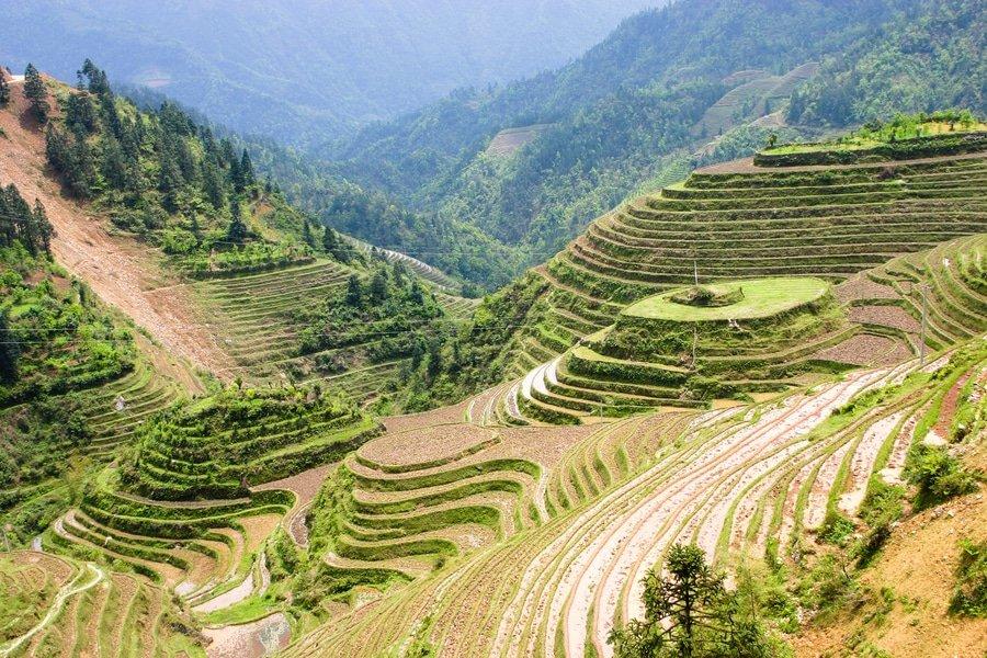 Longji Rice Terraces, Guilin, China