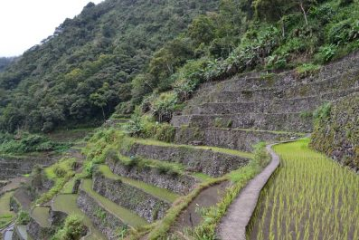 Banaue Rice Terraces, Northern Philippines