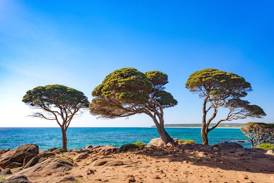Bunker Bay, Dunsborough, Western Australia