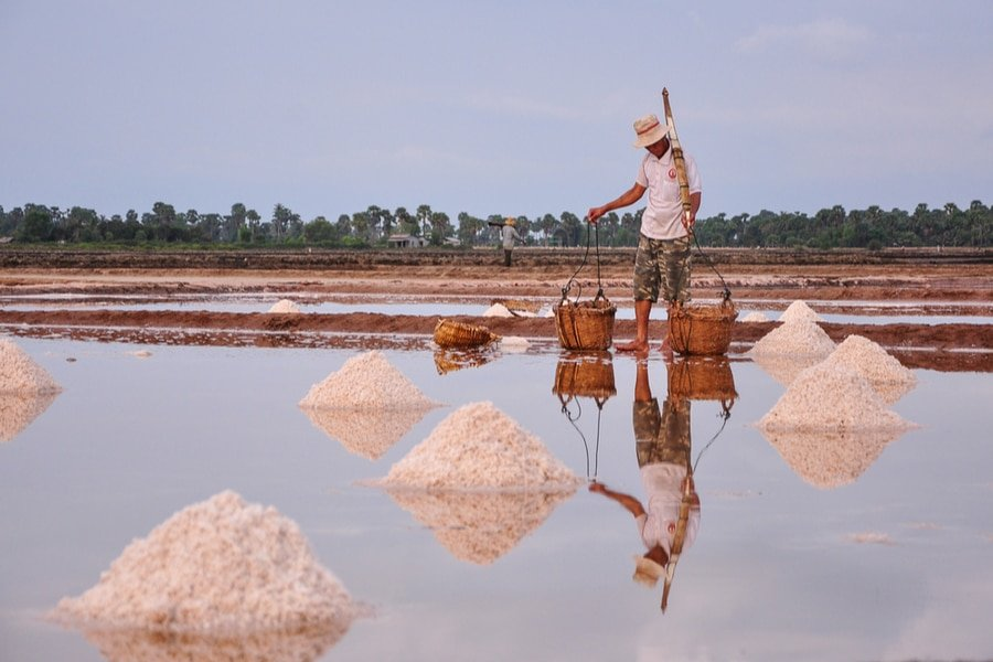 A man harvesting salt on the field of Kampot, Cambodia
