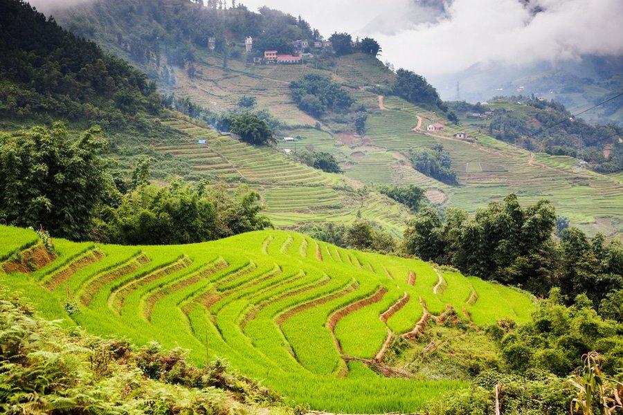 Up North: 3 days in Sapa, Vietnam