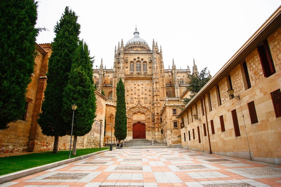 Old Cathedral Vieja, Salamanca, Spain