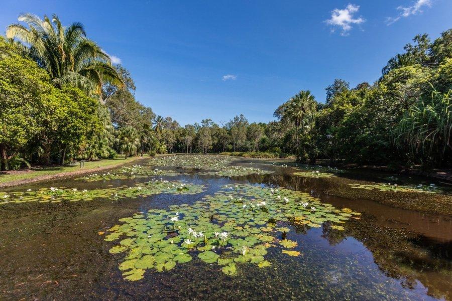 Cairns Botanical Garden, Australia