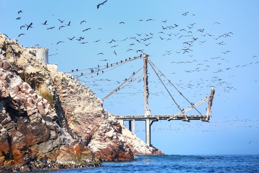 Old pier, Ballestas Islands Reserve, Peru