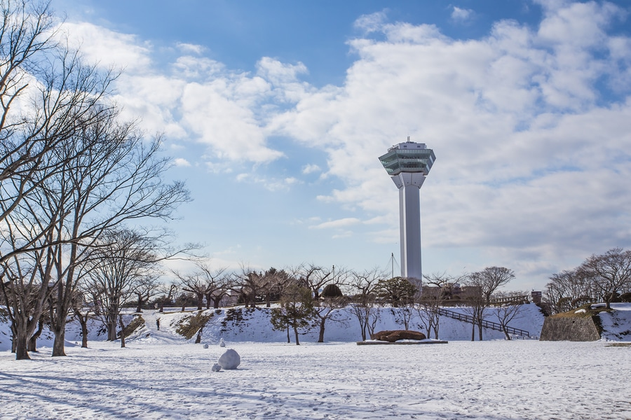 Goryokaku Tower, Hakodate, Japan