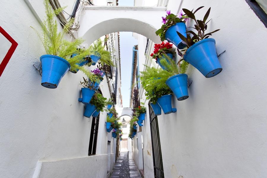 Flower street Calleja de las Flores in old Jewish quarter of Cordoba, Spain