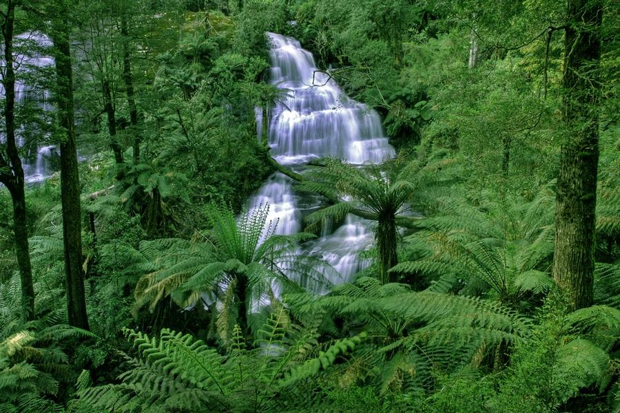 Triplet Falls in Otway National Park, Australia
